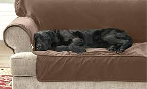 waterproof furniture cover for pets co sofa pet protector covers reviews