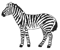 Small Picture Modest Zebra Coloring Pages KIDS Design Galler 1437 Unknown