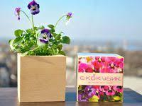 20+ лучших изображений доски «Экокуб, <b>растущие карандаши</b> ...