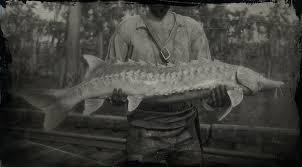 Lake Sturgeon Red Dead Redemption 2 Animals Species