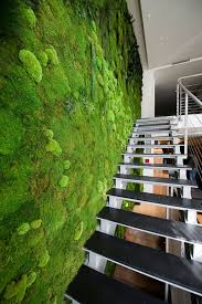 Indoor Living Wall 16 Peaceful Indoor Living Wall Designs For Any Home  Digsdigs