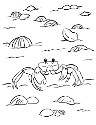 Small Picture Ghost Crab Coloring Page Samantha Bell