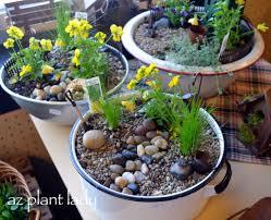fairy garden container ideas. Fairy Garden Container Ideas With - Bombadeagua E