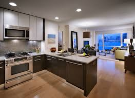 kitchen stunning open plan kitchen with living room feat l shaped cabinets stunning open plan