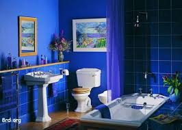bathroom color ideas blue. Steven And I Came To An Agreement That We Would Like This Bathroom. Reluctantly · Bathroom Colors BlueYellow Color Ideas Blue