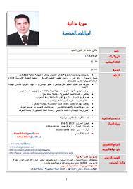 arabic english cv