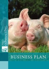 Pig Farming Business Plan Business Plan For Pig Farm On 1 Million Heads