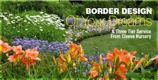 Small Picture Border designs service