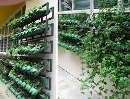 Small Picture Interesting Vertical Garden Ideas Diy Unusual Vegetable To Inspiration