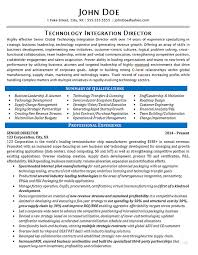 Director Engineering Resumes Technology Director Resume Example It Integration