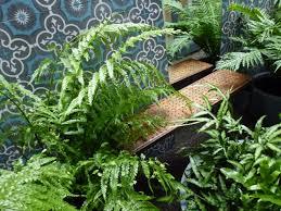 Small Picture Latest Work Small Spaces Garden Design Urban Garden Design