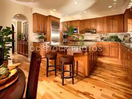 Honey Oak Kitchen Cabinets kitchen wood flooring ideas honey oak kitchen cabinets with wood 2974 by guidejewelry.us