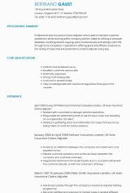 Excellent Cv Cv Samples Cv Templates By Industry Livecareer