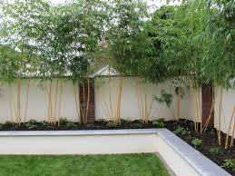 Small Picture coloured planter walls Google Search Garden Space Pinterest