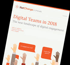 Download Digital Teams Report | Netchange Consulting