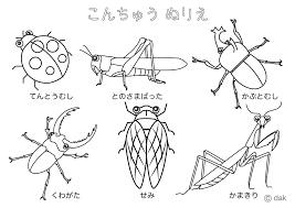 昆虫ぬりえの無料イラスト素材イラストイメージ