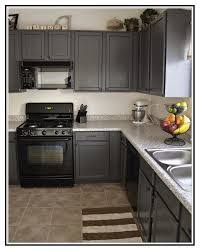painted kitchen cabinets with black appliances. Painted Kitchen Cabinets Ideas Beautiful Image Result For Grey And Black Appliances Of Elegant With N