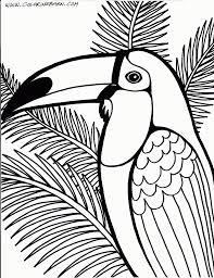 Small Picture Toucan coloring page Printables Pinterest Bird Adult