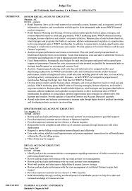 Retail Sales Executive Resume Retail Account Executive Resume Samples Velvet Jobs