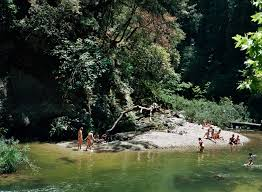 Swimming Hole Pool Design The Magic Of Swimming Holes The New York Times