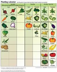vegetable garden calender incredible best time to plant vegetable garden spring garden