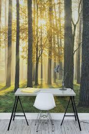 Golden Sunlight Forest Wallpaper For Workspace