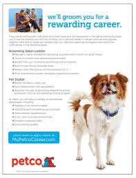 Pucci Designer Grooming Chester Nj Pet Groomer Job Ads New Jersey Petgroomer Com Classified Ads