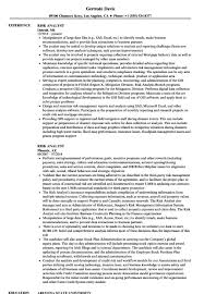 Salesforce Business Analyst Resume Awesome Risk Analyst Resume