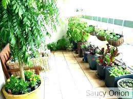apartment patio gardening apartments under 1000 apartments in