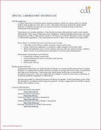 Technology Sales Resume Sample Resume For Technology Teacher New Sample Resume For