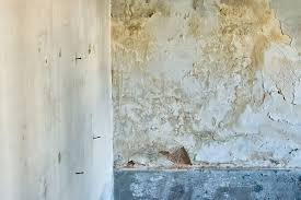 How To Get Rid Of Rising Damp