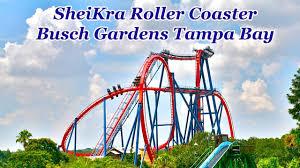 sheikra roller coaster busch gardens ta bay hd pov 60fps