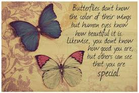 Butterfly Beauty Quotes Best of Famous Butterfly Quote Butterflies Do Not Know The Color Of Their