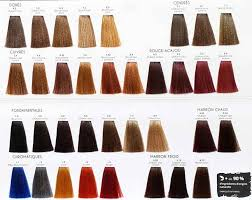 Color Chart Color One Mulato Vision Hair