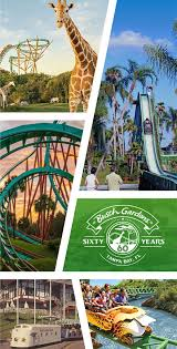 did you know busch gardens is home to over 240 animal species and a state of the art animal hospital
