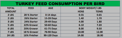 Broiler Feed Conversion Chart Turkey Feed Consumption Chart New Farmer Medium