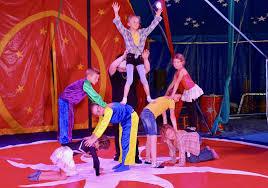 https://cdn-s-www.leprogres.fr/images/DE7D4BF3-F1E9-411C-98C2-E5E8F6B0208E/NW_raw/prendre-de-l-assurance-a-tous-niveaux-est-aussi-une-des-missions-de-l-ecole-du-cirque-photo-progres-roger-pansard-1627148691.jpg