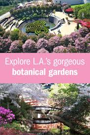 stop and smell the flowers at the most beautiful botanical gardens in los angeles