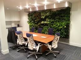 Vancouver office. Main feature: living wall installed in a basement. No  windows, no natural light.