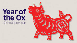 Till the coming 2022 new year only 324 days left, and the new. Year Of The Ox Education Pack British Council