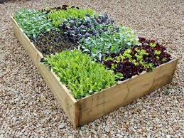 timber raised bed kit 9in high allotment planter offer 39 95 39 95 rrp was