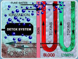 Foot Detox Machine Color Chart Ionic Detox Monument Chiropractic