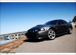2003 Ford Mustang Mach 1 by bubzphoto on DeviantArt