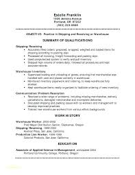 Sample Basic Resume Basic Resume Example For Jobs Sample Free Resume ...