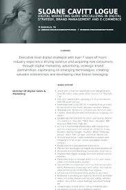 Social Media Manager Job Description Resume Best of Social Media Resume Example Social Media Resume Example Resume