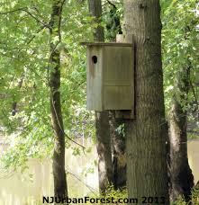 house plan wildlife home plans wood duck houses blueprints building pdf plans desk plans secret