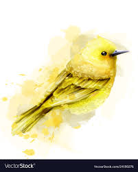 Yellow Bird Design Cute Yellow Bird Watercolor Isolated On