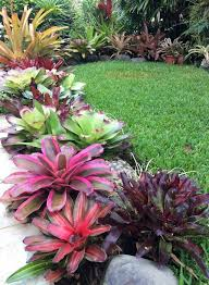 Small Picture Best 25 Tropical landscaping ideas only on Pinterest Tropical