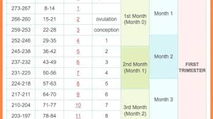 Pregnancy Calculation Calendar Free Printable Pregnancy Calendar Week By Week Chart Template