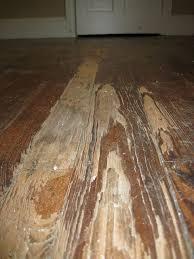 Best 25 Painted hardwood floors ideas on Pinterest